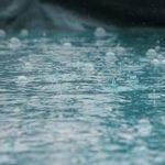 Year of Abundant Rain